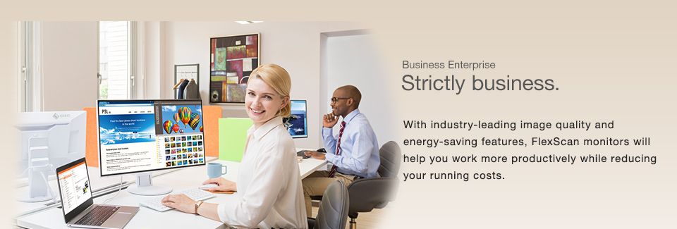 Business Enterprise Schools and Offices | EIZO